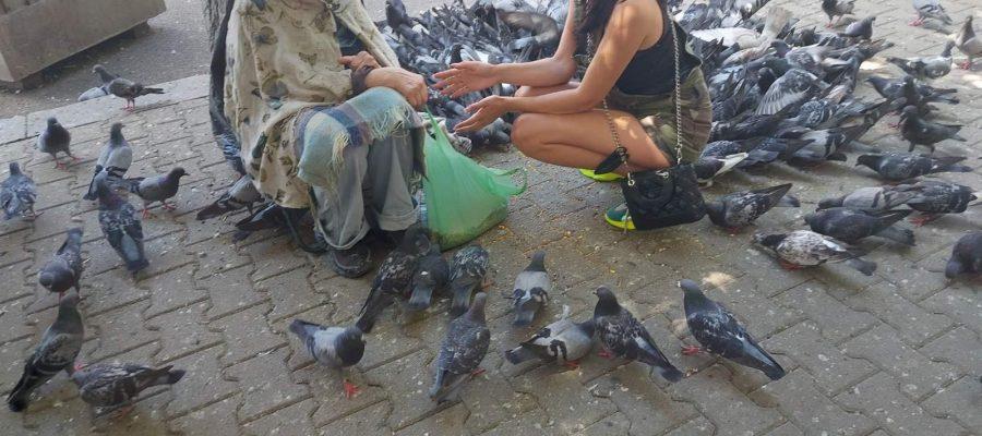 Димитрия Митренова от Пловдив занесе храна за гълъбите на кака Величка